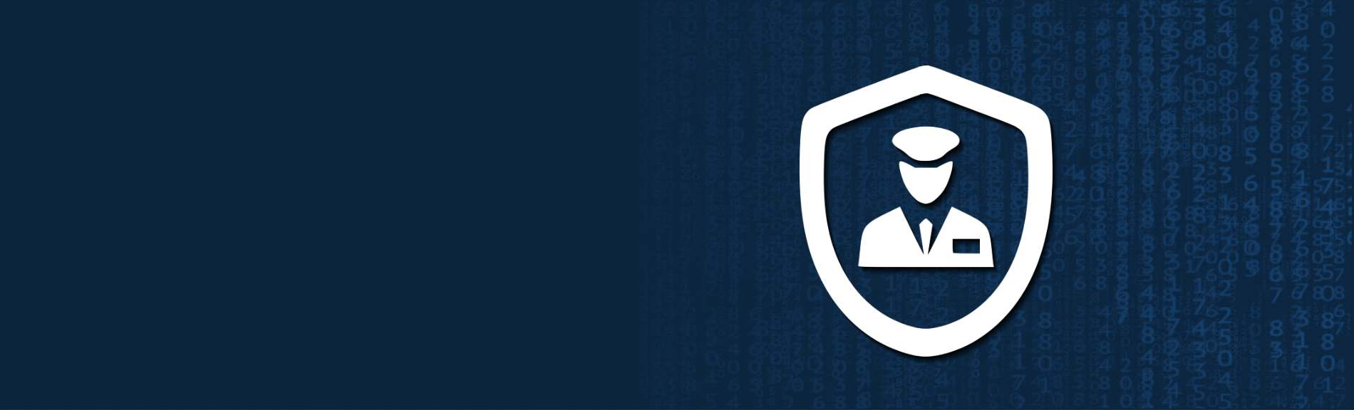 Our WordPress Website Security will protect your business.