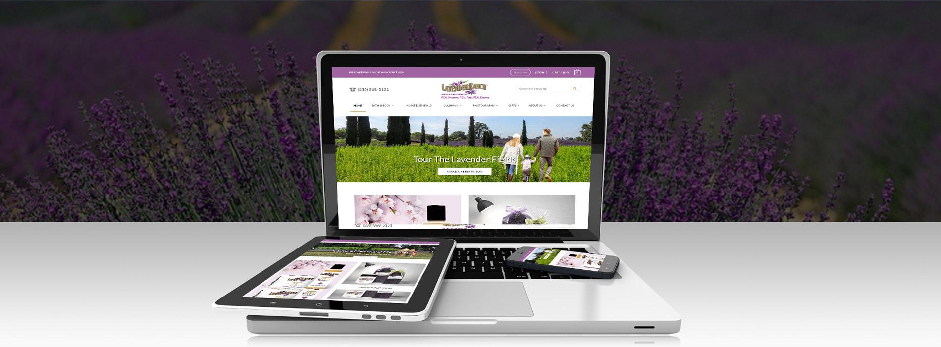 Lavender Ranch