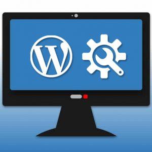 Website Platform Maintenance