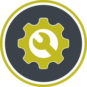Service and Security Checking Icon