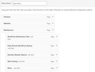 How To Use WordPress Menus